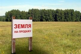Неухомість/земельні ділянки
